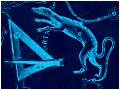 Lacerta-Triangulum-120x90