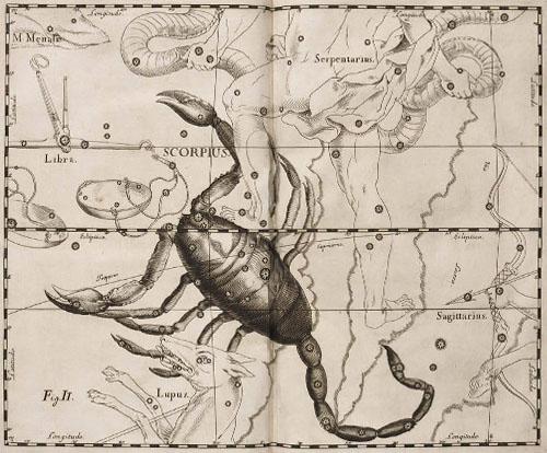 Созвездие Скорпион в атласе Гавелия.
