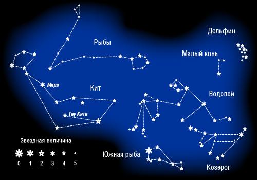 Созвездия Кит, Рыбы, Водолей, Козерог, Дельфин, Малый Конь, Южная рыба
