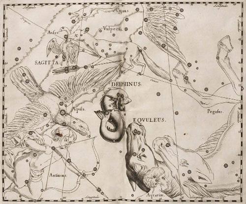 Созвездия Малый конь и Дельфин в атласе Гевелия