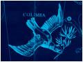 Созвездие Голубь (Columba)