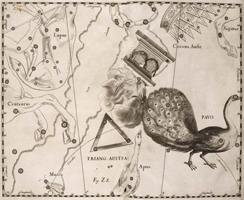 Созвездия Павлин, Жертвенник и Южный Треугольник в атласе Гевелия